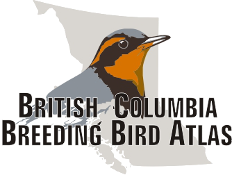 What is a Breeding Bird Atlas?