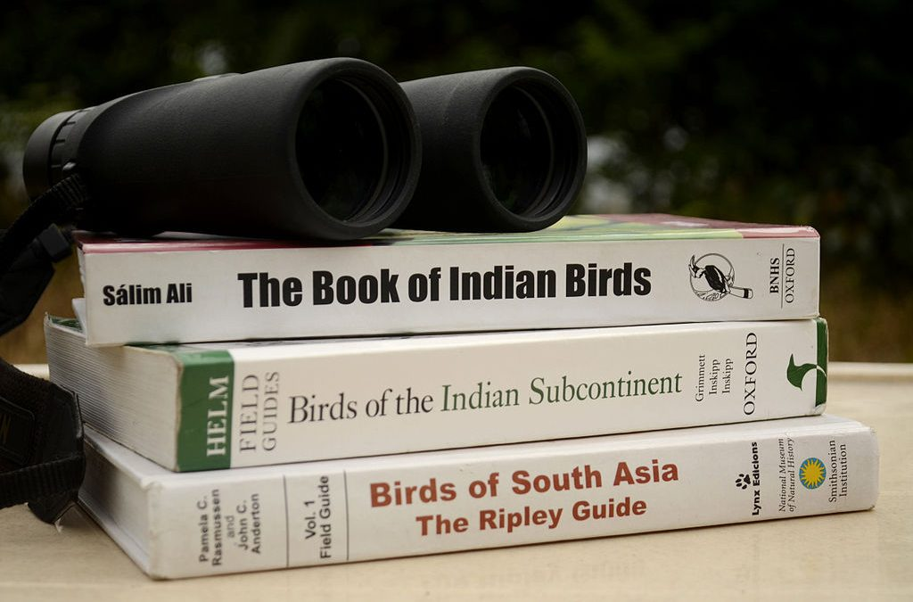 A More Extensive Birdwatching Equipment List