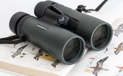 A Basic Birdwatching Equipment List
