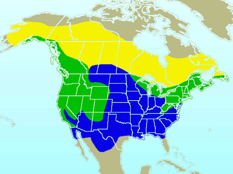 Uses of Breeding Bird Atlas Data